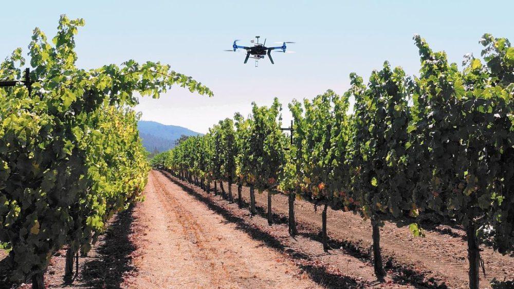 foto drone wine